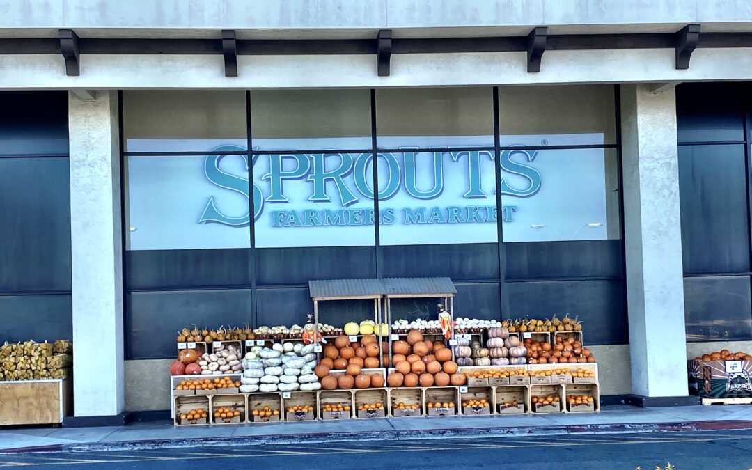 Sprouts in Huntington Beach awards grant to Robyne's Nest